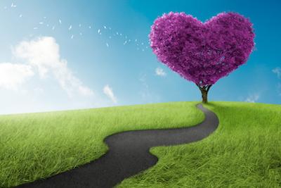 恋愛と引き寄せの法則